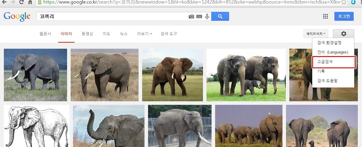 블로그 구글 이미지2.jpg